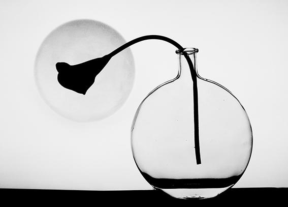 SECONDA ClassA  Foto n° 16 – PHOTO CLUB MUGELLO LUCA MERCATALI Un gran respiro in una foto minimalista dove eccelle la compostezza dell'immagine tutta. Il tema è rispettato, nel suo diventare lettura semplice si può apprezzare la significazione della simb