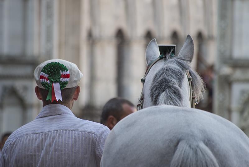 Palio 02/06/2013 Cavallo vincitore Guess - Oca - , SI
