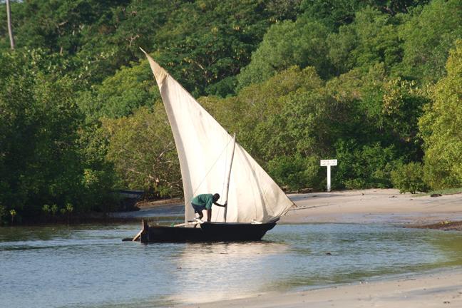 Tanzania vela di altri tempi