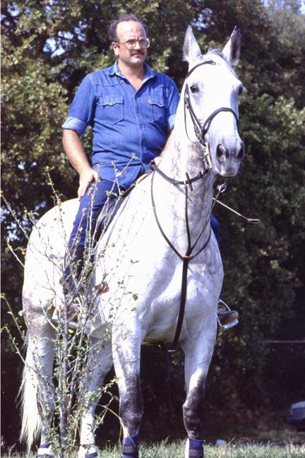 gita equestre