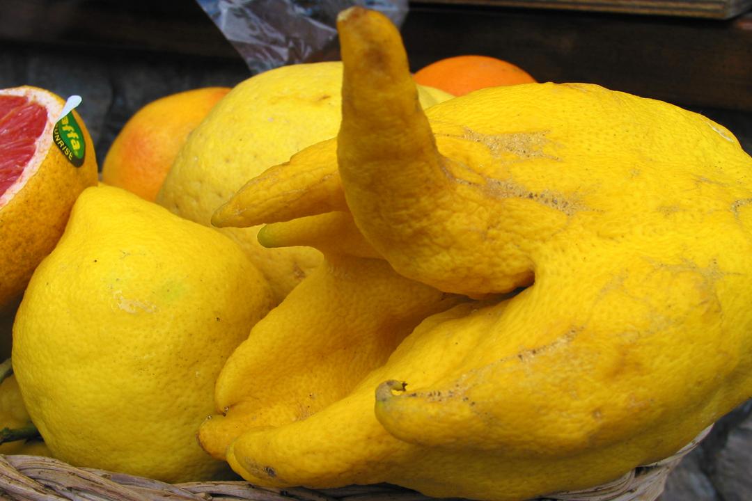 Limone di Capri